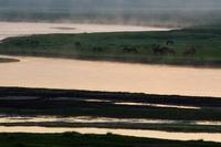 川霧湧き立つモンゴルの風景