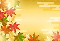 秋の紅葉のもみじと日本風の背景