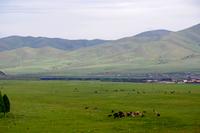 モンゴルを走る旅客列車