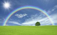 草原の一本木と雲と太陽と虹