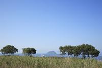 琵琶湖 湖北