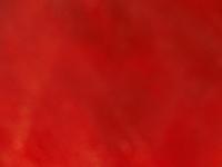 赤いバックグラウンド