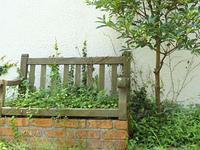ジャンクガーデンと木のベンチ