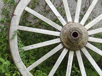 ジャンクガーデンと荷車の車輪