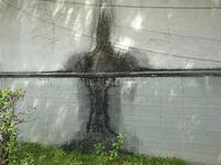 建物の外壁のシミ