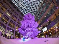 丸の内・Kitte のクリスマスツリー