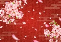 和柄の背景と桜