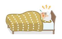 発熱してベッドで寝込むシニア男性 - 全身
