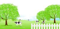 牛 牧場 草原 背景