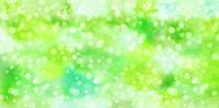 新緑 空 光 背景