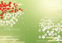 桜と日本風の背景