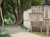 埼玉県 武蔵一宮氷川神社 蛇の池