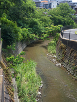 神奈川県 野比川