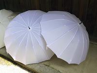 雨傘を乾かす