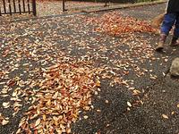公園に落ちた枯葉の掃除