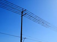 電線と電柱