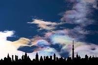 スカイツリーと彩雲