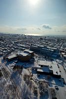 函館美十館と市内景色
