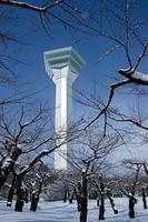 白銀の五稜郭タワー