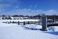 真冬の五稜郭跡