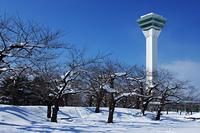 新雪と五稜郭タワー