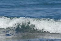 打ち寄せる波高速シャッターで波頭を撮る