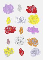 薔薇(カラー)