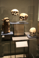 メキシコシティ国立人類学博物館