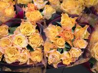 店頭に並んだバラの花