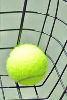 カゴの中のテニスボール