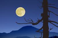 平等院と満月