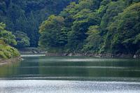 只見川渓谷