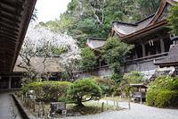 吉野水分神社(みくまりじんじゃ)
