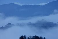 雲海の竹田城