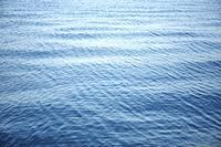 美保湾の海