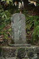 飯沼貞雄墓所
