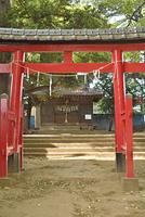 天沼神社 朱鳥居