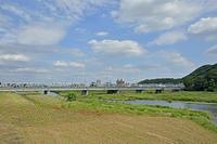 渡良瀬川と渡良瀬橋