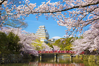 春の姫路城と赤い橋