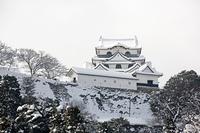 彦根城雪景色