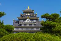 快晴の岡山城