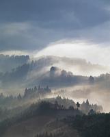 大和の雲海