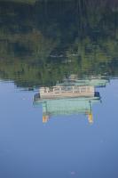 外濠に映る名古屋城