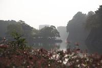 名古屋城の外濠
