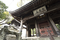 聖福寺の天王殿