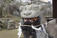 梅園身代わり天満宮の歯痛狛犬