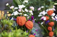 ほおずきの供花