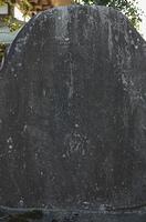 成田山絵図