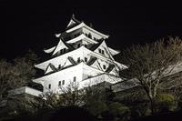 城のライトアップ