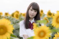 ひまわり畑の中に居る女子高生